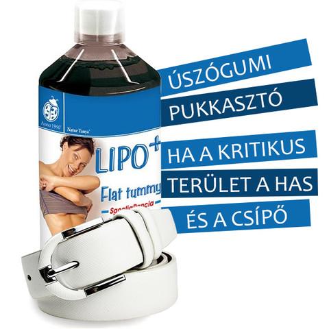 LIPO+ lapos has gyógynövény koncentrátum 500ml